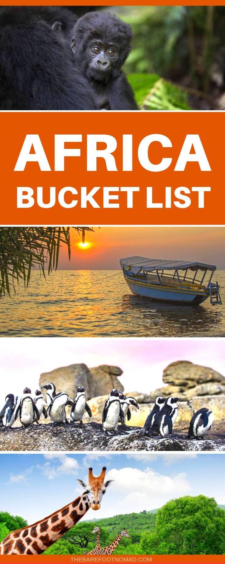 Africa bucket list for this amazing continent