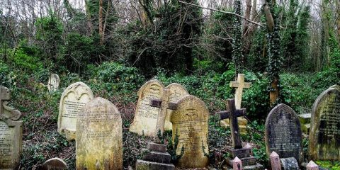 tombstones at Highgate Cemetery in London England