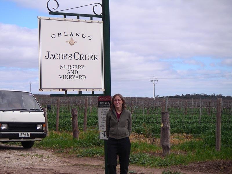 Jacobs Creek Winery Barossa Wine Region in Australia